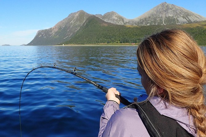 Charter boat fishing 3 hours - Private trip