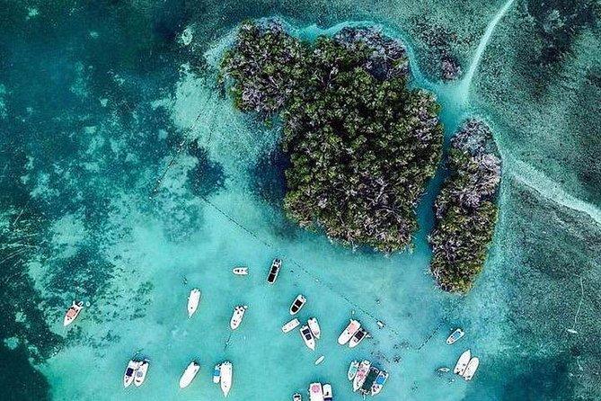 Mata La Gata Island Day Trip
