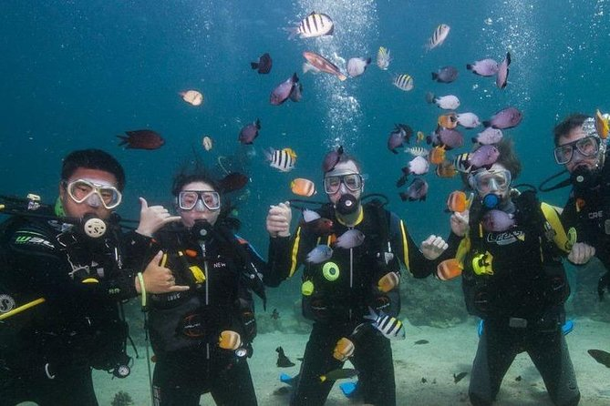 Scuba Diving in Boracay photo 1