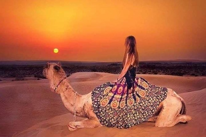 Private Camel safari With Sunset & Exclusive Dinner on Dunes