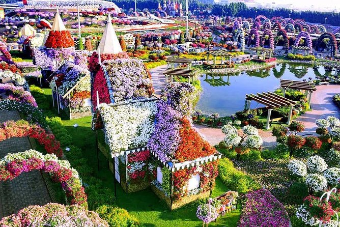 Miracle garden and Global Village tour in Dubai photo 1