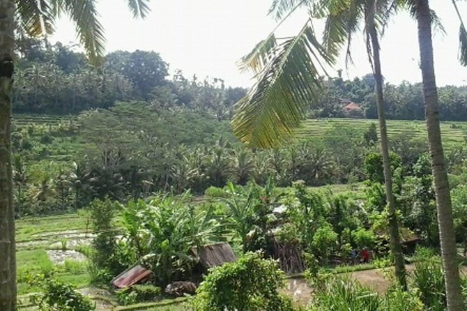 Private Tour: Bali Cultural Heritage Tour photo 4