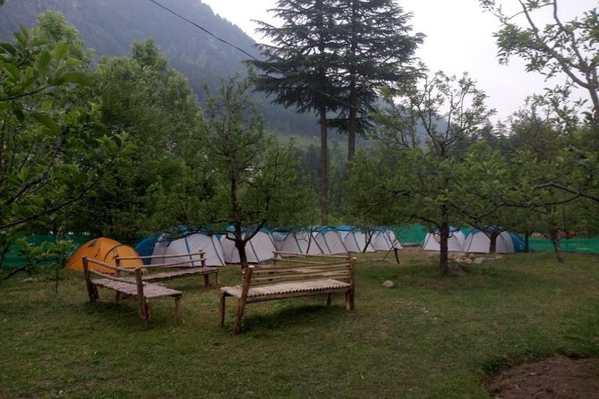 Camping in Manali photo 10