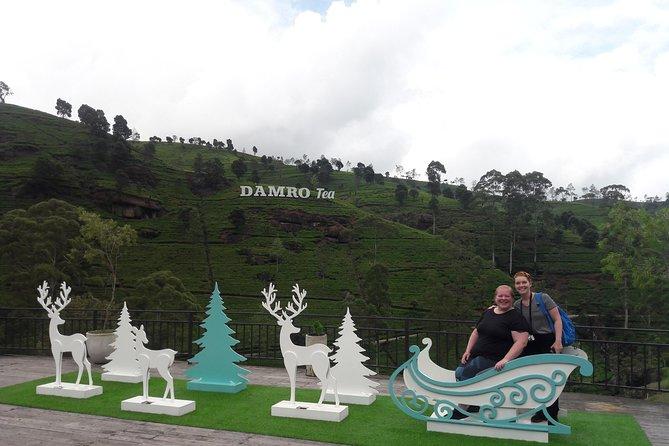 NuwaraEliya Day Tour.