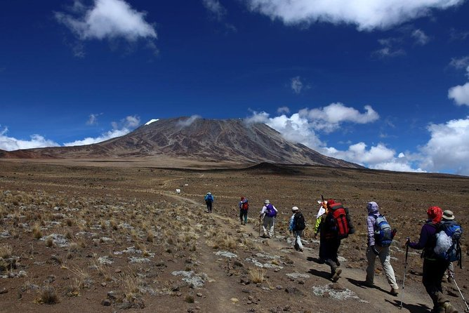 7 Days KILIMANJARO CLIMB MACHAME ROUTE photo 2
