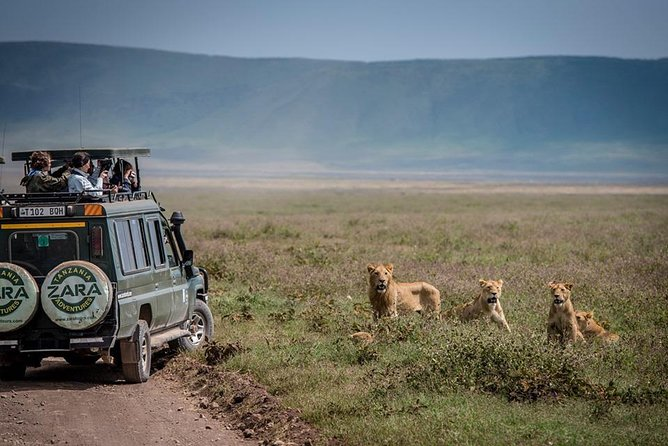 Elephant Special Serengeti & Ngorongoro Crater 5 Days / 4 Nights