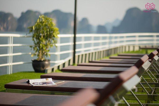 Magenta Cruise 5 Star - Ha Long Bay & Lan Ha Bay 2 Days 1 Night Tour