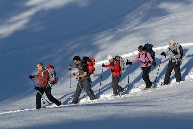 Caminhadas na neve em uma terra de sonho de inverno