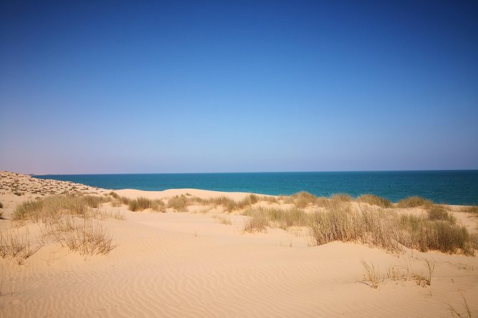 Wahiba Sands to Indian Ocean Crossing (3days/2nights)