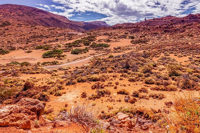 Teide and Puerto de la Cruz Full Day Tour photo 2
