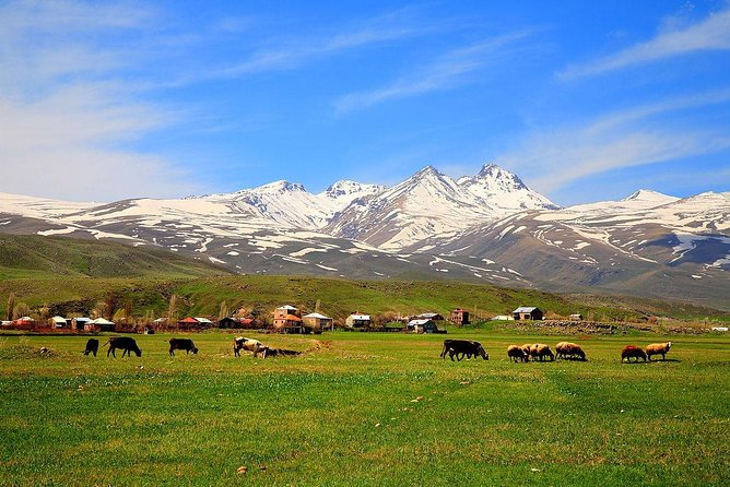 Mount Aragats, Amberd Fortress, Saghmosavank Monastery, Alphabet - private tour