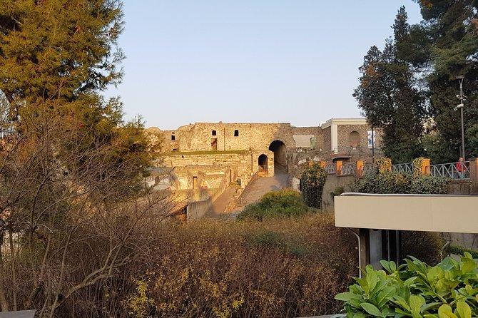 Pompeii & Herculaneum Guided Tour w/ Driver & Minivan + English-Speaking guide