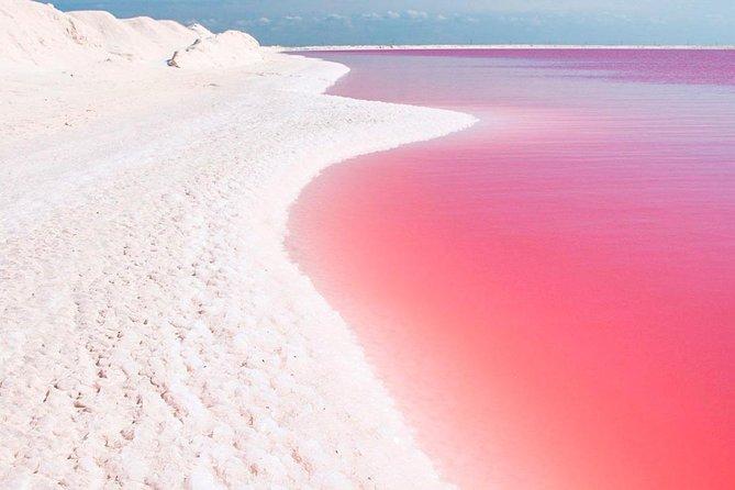 Natural Pink Lake Tour Las Coloradas - From Cancun