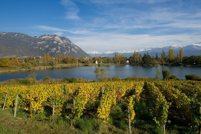 Chambéry: Wine Tasting Walk with Vineyard Views photo 1