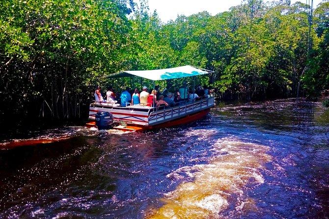 Black River Safari * YS Falls * Appleton Rum Tour