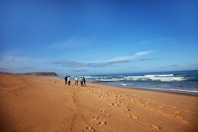 1 day surfing with Atlantic Coast Surf School