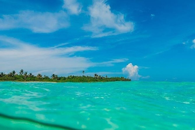 Amazing Tour in Sian Kaan from Puerto Morelos & Playa del Carmen
