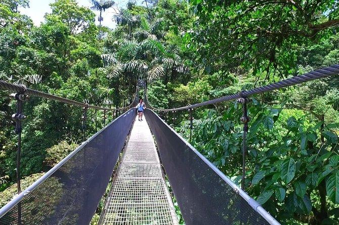 Puentes colgantes de Arenal desde Arenal