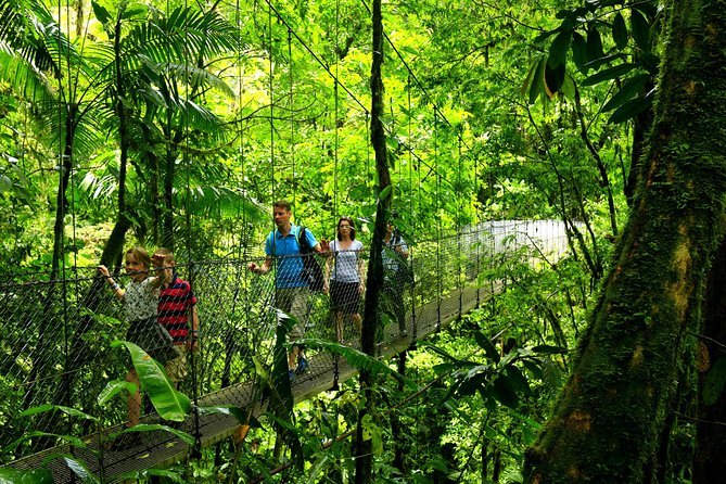 Arenal Hanging Bridges From Arenal photo 6