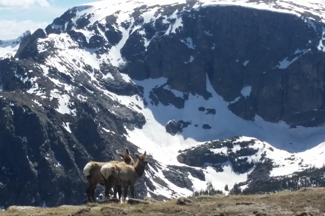 Hiking Adventure in Rocky Mountain National Park from Boulder