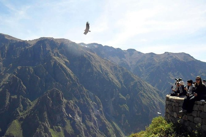 Colca canyon full day + buffet lunch photo 4