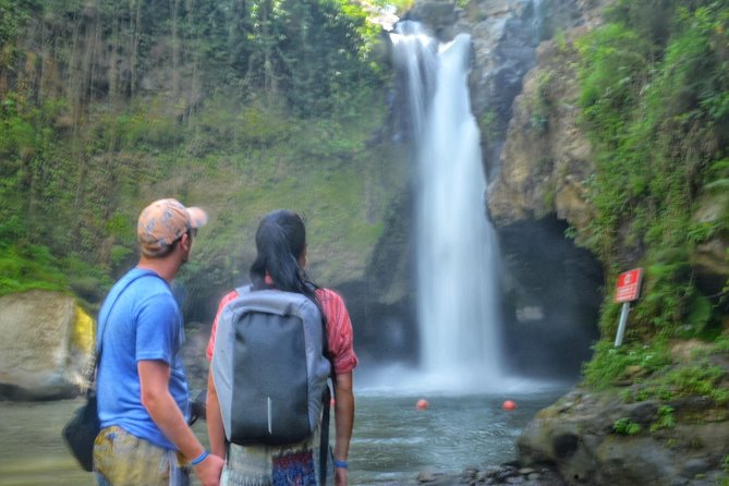 Full Day Ubud and Swing with Private Transportation