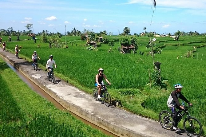 Outback Ubud Adventures - Cycling Adventure
