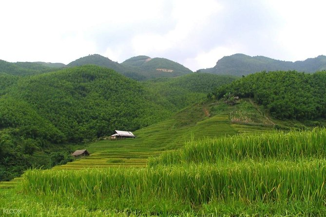 Ma Tra and Ta Phin Village Private Trekking Tour from Sapa photo 4