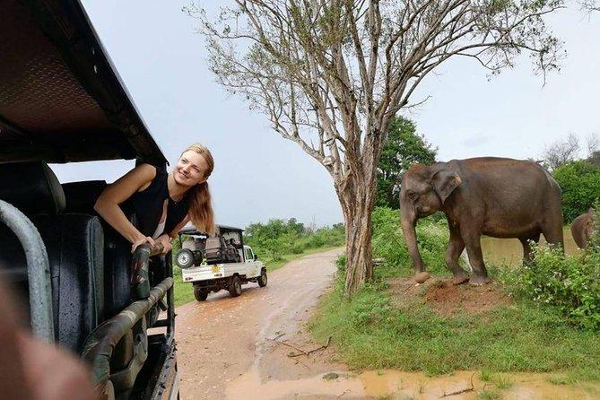 Udawalawe National Park Private Safari with Naturalist-Guide