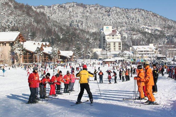 Play winter sports Ski at Yongpyeong or Alpensia (Pyeongchang)