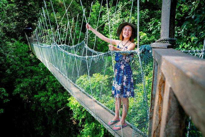 Kinabalu Park & Poring Hot Spring & Canopy Walk