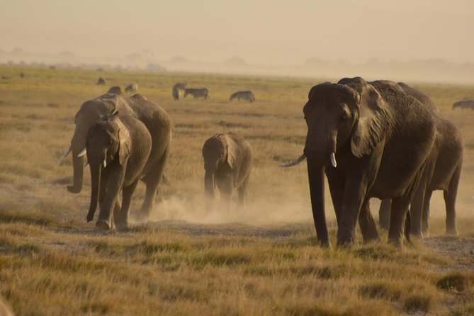 3 Days 2 Nights Amboseli National Park