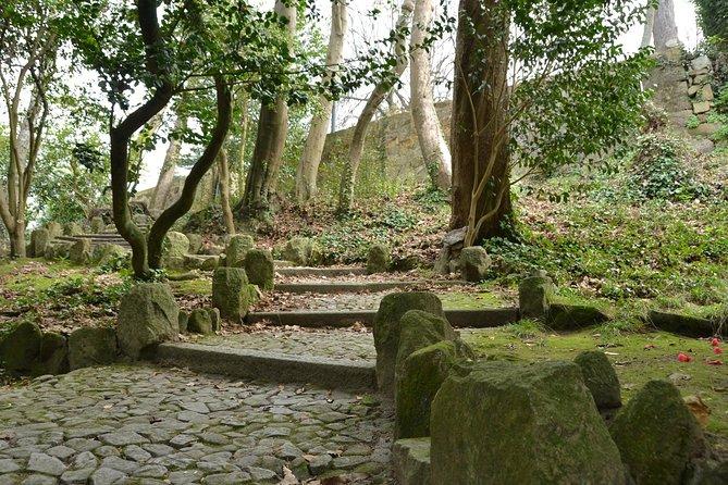Discovery Walk in Porto's Jardins do Palácio de Cristal: fairytale views