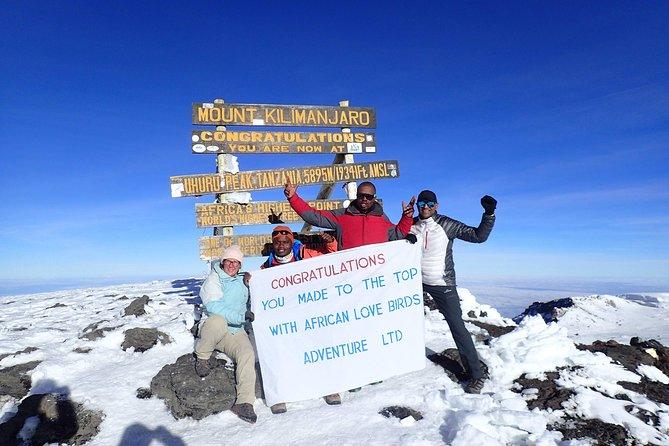 8 Days Kilimanjaro Lemosho Route