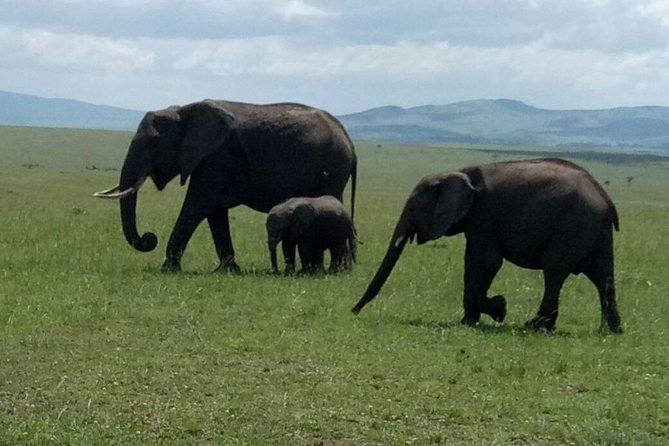 5 Days Kenya Adventurous Safari