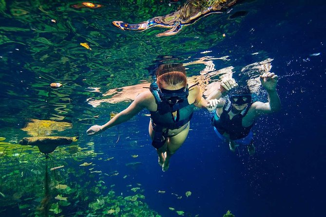 Tour Xenotes From Cancun