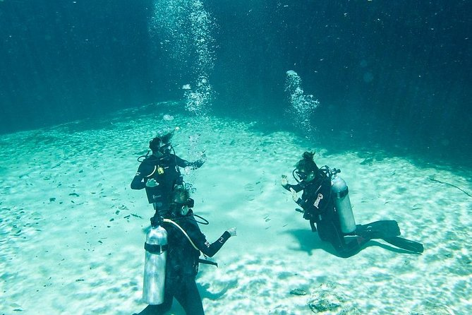 Cenote Diving for First-Time Divers and for Refresher Dives in Tulum photo 10