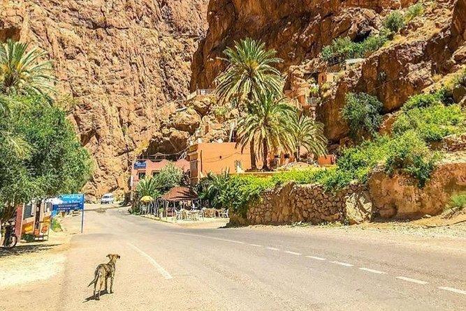 5 days over Berber villages