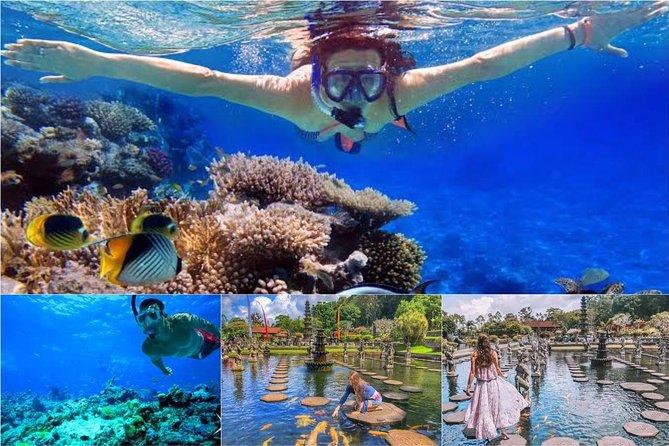 All Inclusive : Bali Blue Lagoon Snorkeling with Tirta Gangga
