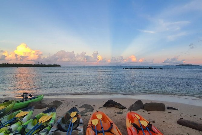 Bioluminescent Bay Night Kayaking 6:00pm | Transportation from San Juan