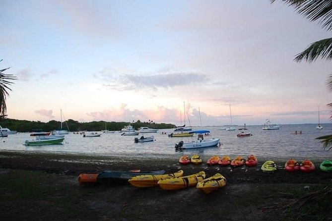 Bioluminescent Bay Night Kayaking 6:00pm | Transportation from San Juan