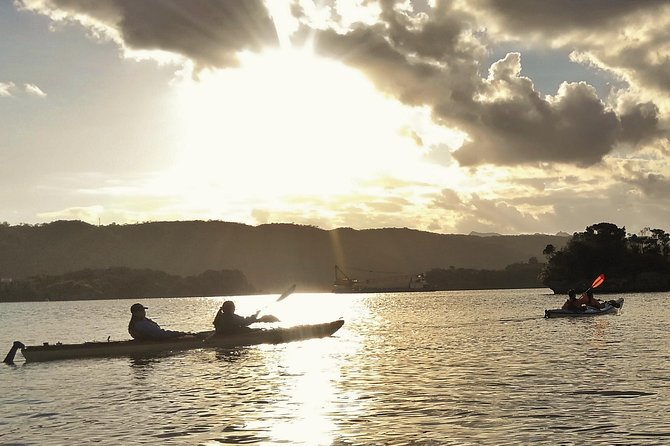 Kayak Northern Okinawa, customised and private tours photo 2