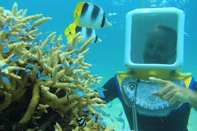 Private Tour: Aqua Safari Scuba Diving