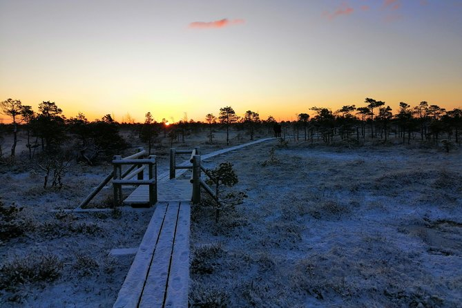 Sunrise at Kemeri National park + Jurmala