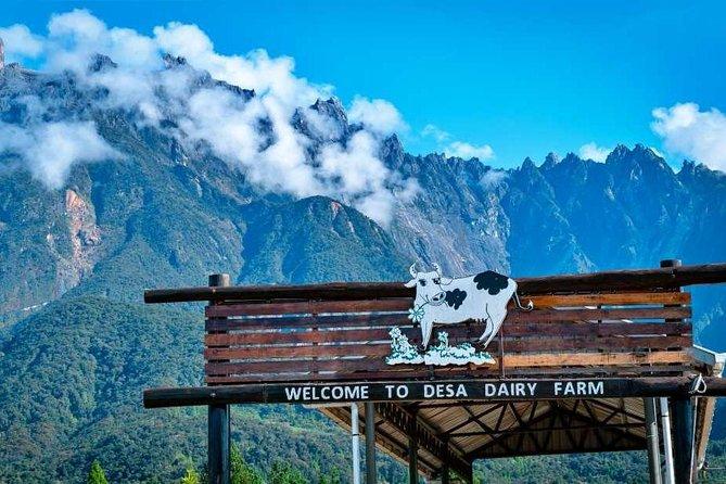 Kinabalu Park With Rumah Terbalik & Desa Cow Farm