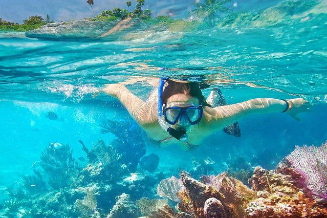 All inclusive : Bali Snorkeling at Blue Lagoon - Tirta Gangga - Ubud Waterfall