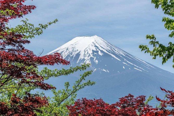 Mount Fuji Classic Day Tour (Join Tour)