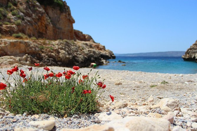 The 7 Villages Of Apokoronas Tour – Explore East Chania Mainland