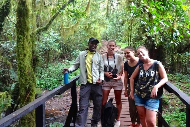 Mount Kilimanjaro Day Hike photo 3