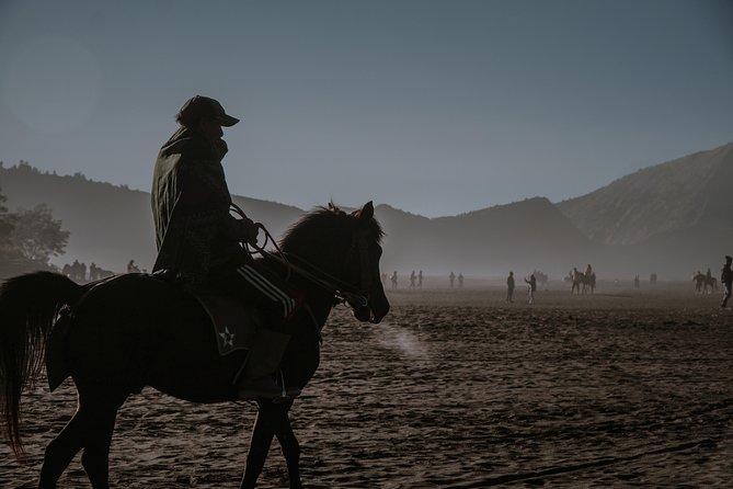 Stay and horseback Training
